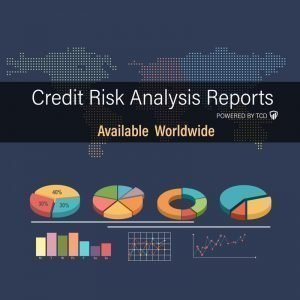 Order credit risk analysis for business